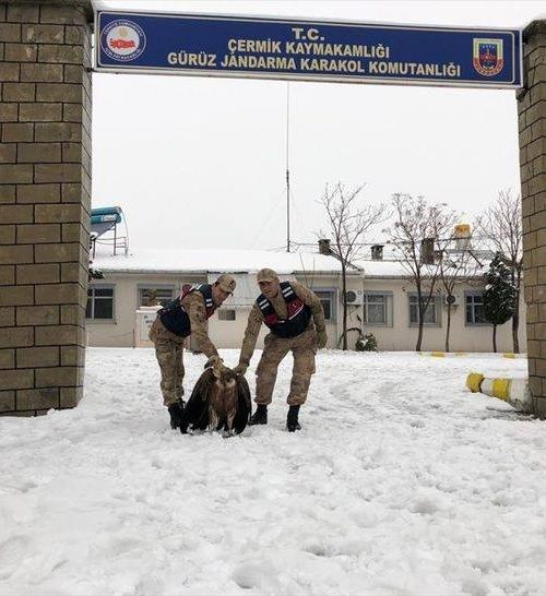 Vojnici sa Dobrilom