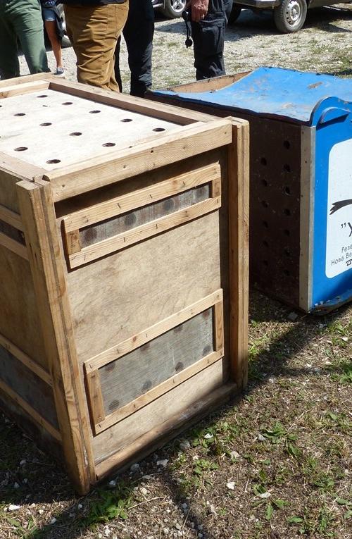 Transportne kutije / Transport boxes